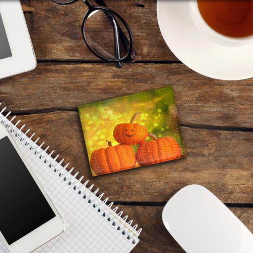 Обложка для студенческого билета  Фото 03, Pumpkin
