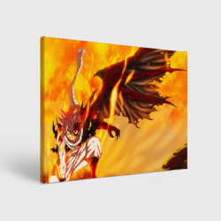 Fire Natsu Dragneel
