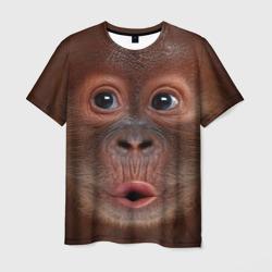 Орангутанг BigFace