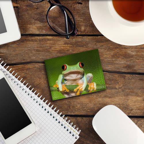 Обложка для студенческого билета  Фото 03, Лягушка