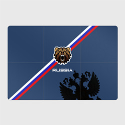 Russia медведь