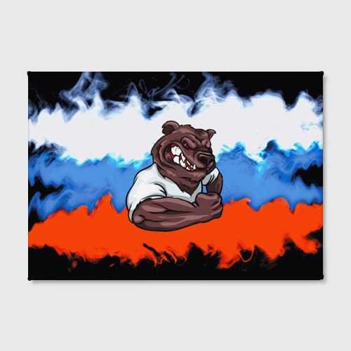 Холст прямоугольный Медведь Фото 01