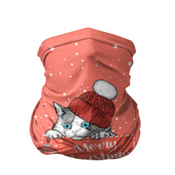 Кошка в кармане