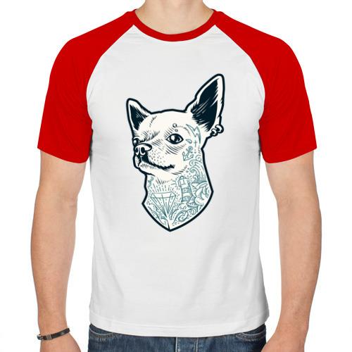 Мужская футболка реглан  Фото 01, Чихуахуа swag