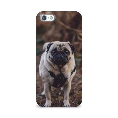 Чехол для Apple iPhone 5/5S 3D  Фото 01, Pug