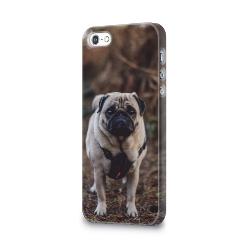 Чехол для Apple iPhone 5/5S 3D  Фото 03, Pug