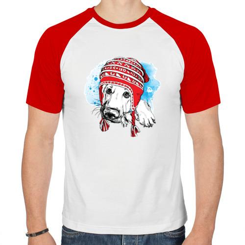Мужская футболка реглан  Фото 01, Немецкая овчарка в шапочке