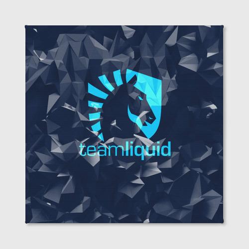 Холст квадратный Team Liquid Uniform Фото 01