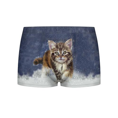 Мужские трусы 3D  Фото 01, Зимний котик