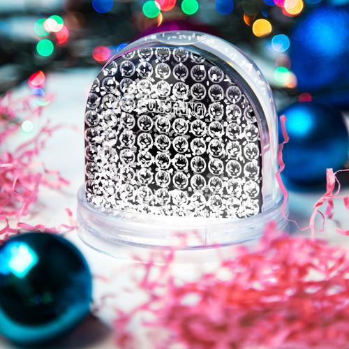 Водяной шар со снегом  Фото 04, The Offspring