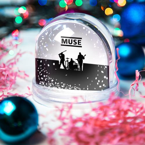 Водяной шар со снегом  Фото 03, Muse
