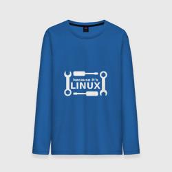Потому что это Linux
