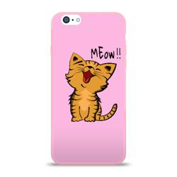 Meow !!