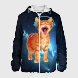Котёнок в наушниках