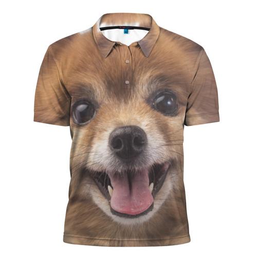 Мужская рубашка поло 3D  Фото 01, Рыжий пушистик