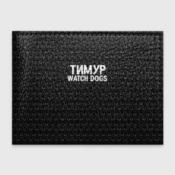 Тимур Watch Dogs