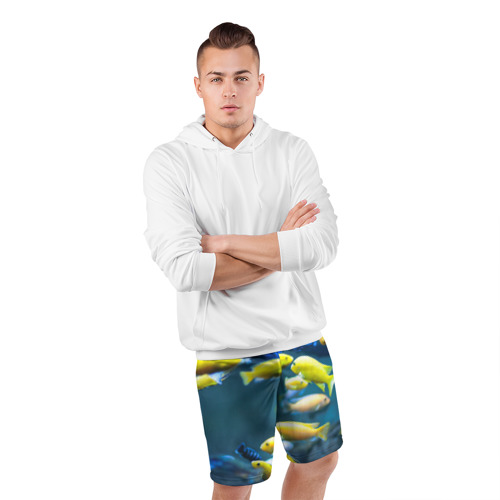 Мужские шорты 3D спортивные  Фото 05, Рыбки