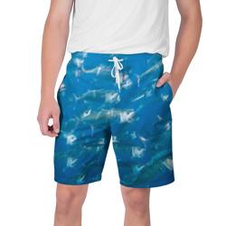 Рыбы океана