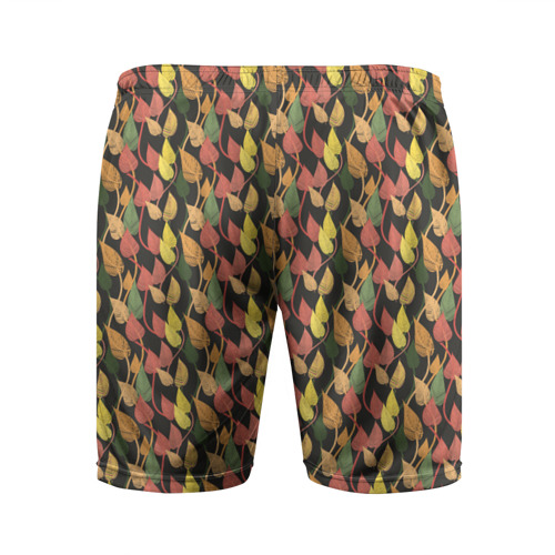 Мужские шорты 3D спортивные  Фото 02, Листья