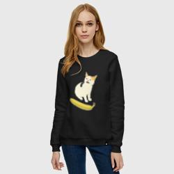 Cat no banana