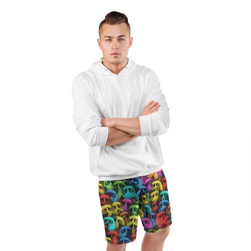 Мужские шорты 3D спортивные  Фото 05, Разноцветные сердитые коты