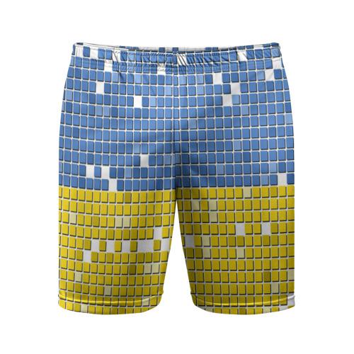 Мужские шорты 3D спортивные  Фото 01, Украина