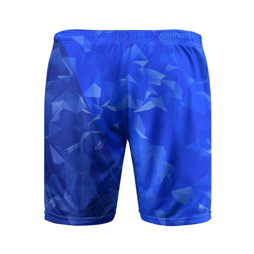Мужские шорты 3D спортивные  Фото 02, RUSSIA SPORT
