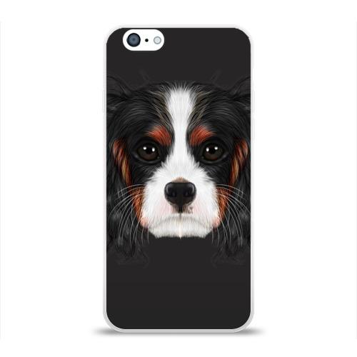 Чехол для Apple iPhone 6 силиконовый глянцевый  Фото 01, Cavalier King Charles