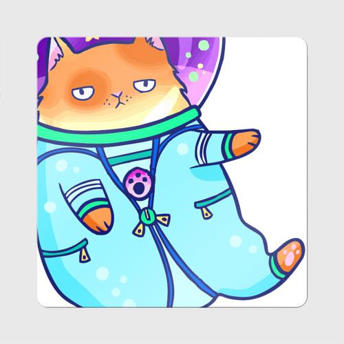 Кот и космос