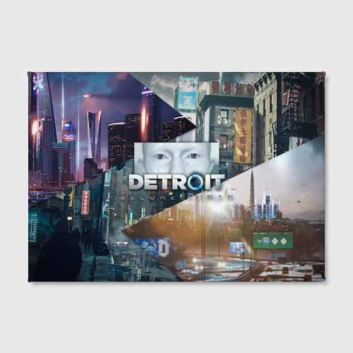 Холст прямоугольный  Фото 02, Detroit: Become Human