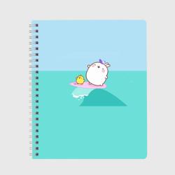 Molang Серфинг