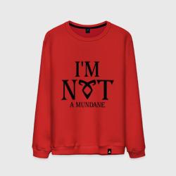 Not a mundane