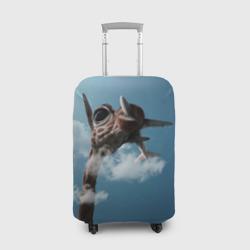 Жираф и самолет