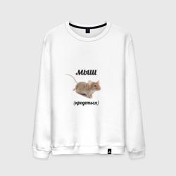Мыш кродеться