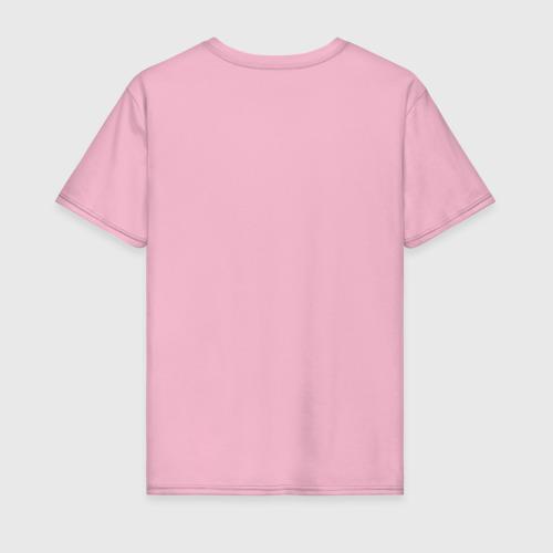 Мужская футболка хлопок Наука (светлые) Фото 01