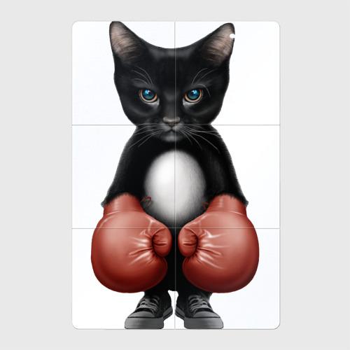 Котёнок боксёр