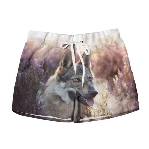 Женские шорты 3D  Фото 01, Волк