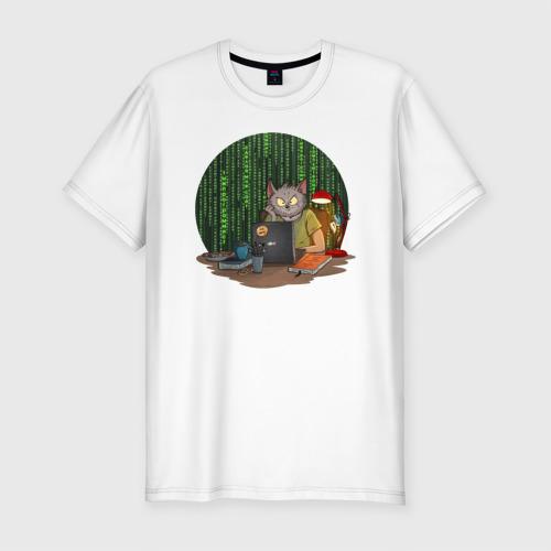IT - кот