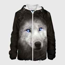 Голубоглазый волк