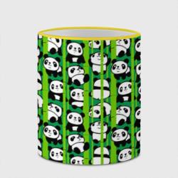 Медведи панда