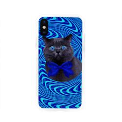 Гипнотический кот