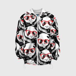 Панды в красных очках
