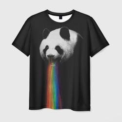Радужная панда