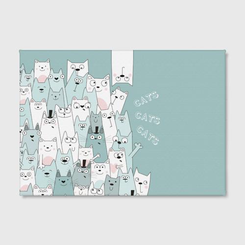 Холст прямоугольный Cats Фото 01