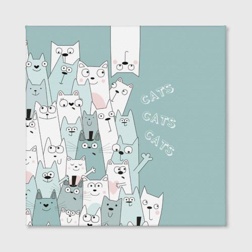 Холст квадратный Cats Фото 01
