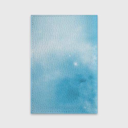 Обложка для паспорта матовая кожа ночная фурия Фото 01