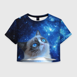 Сердитый кот в космосе