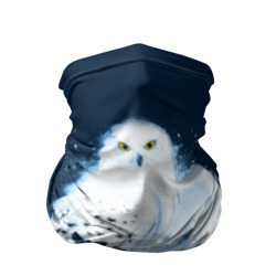 Mail by Owl