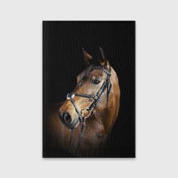 Гнедая лошадь