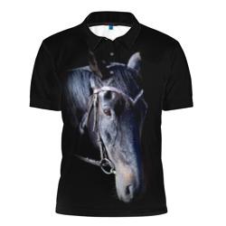 Конь вороной